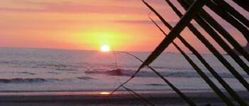 http://www.alexonthebeach.com/wp-content/uploads/2011/02/boats-11-350x150.jpg
