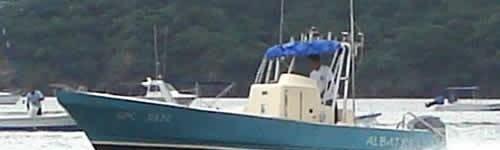 http://www.alexonthebeach.com/wp-content/uploads/2011/02/boats-13-500x150.jpg