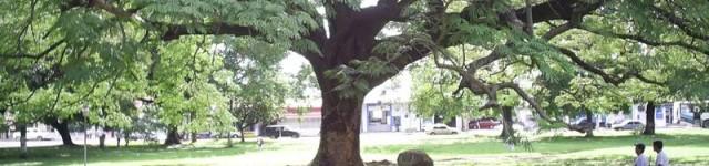 http://www.alexonthebeach.com/wp-content/uploads/2011/02/liberia-11-640x150.jpg