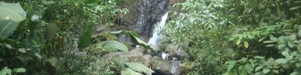 http://www.alexonthebeach.com/wp-content/uploads/2011/02/miravalles-waterfall1-600x150.jpg