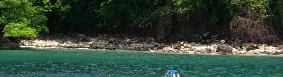 http://www.alexonthebeach.com/wp-content/uploads/2011/02/snorkeling-7-550x150.jpg