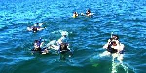 http://www.alexonthebeach.com/wp-content/uploads/2011/02/snorkeling-9-300x150.jpg