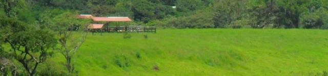 http://www.alexonthebeach.com/wp-content/uploads/2011/03/house-view-3-640x150.jpg
